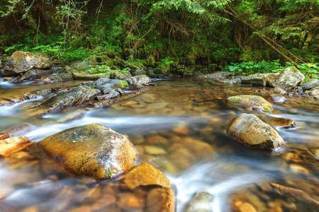 Mountain river creek among stones and trees. Standard-Bild