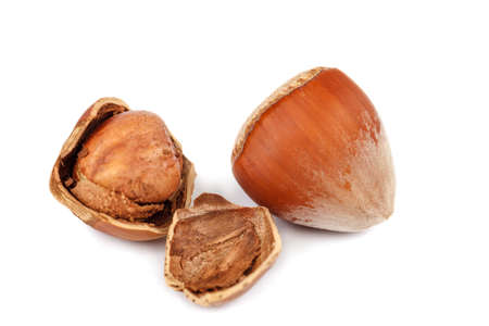 Hazelnut on a isolated on white background. Standard-Bild