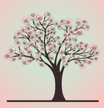 Cherry Tree and Blossoms Vector