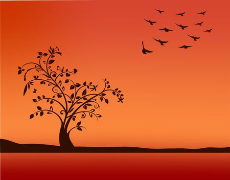 Tree in sunset Vector