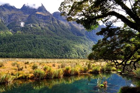 Mirror Lake close to Milford Sound, New Zealand Stock Photo
