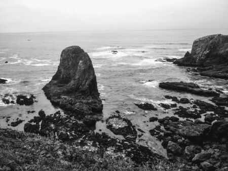 Cape Disappointment with Seals on Rocks, Washington