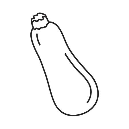 zucchini: Line icon vegetable zucchini. Vector illustration.