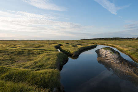 Tidal creeks and salt marshes of St. Peter-Ording on the German North Sea. Imagens