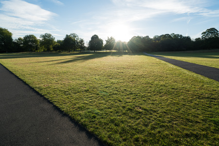 desolated: A field and path in Greenwich park at sunrise. Stock Photo