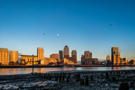 Canary Wharf with the moon, plane and bird overhead.