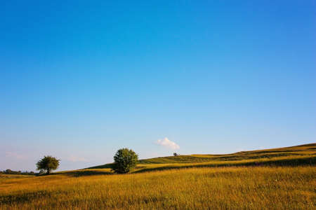 Beautiful pasture with blue sky photo