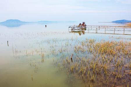 balaton: Anglers fishing on Lake Balaton Stock Photo