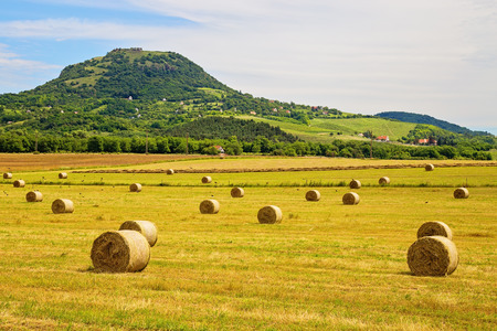 Hay bales at the foot of mountains Badacsony in Hungary Stock Photo