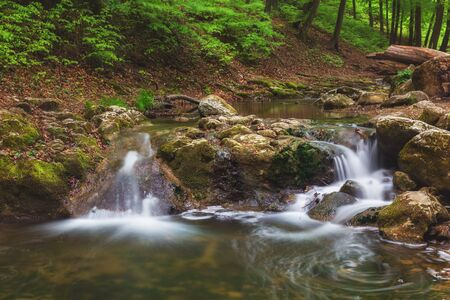 Small river in deep green forest photographed using long exposure Imagens - 124772256