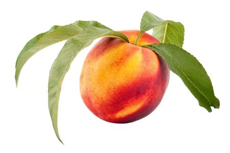 Ripe Peach with Leaf, isolated on White Background Stock Photo - 5519526