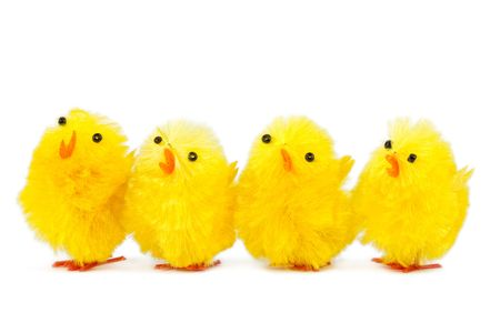 four singing chicks, isolated on white background Stock Photo - 6320529