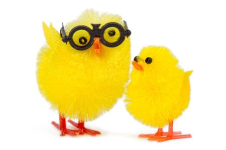 baby chick with funny older brother, isolated on white background photo