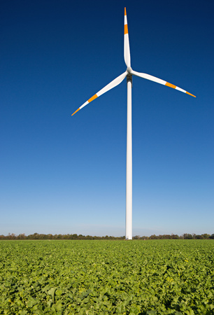 windy energy: One windmill on the field against a blue sky