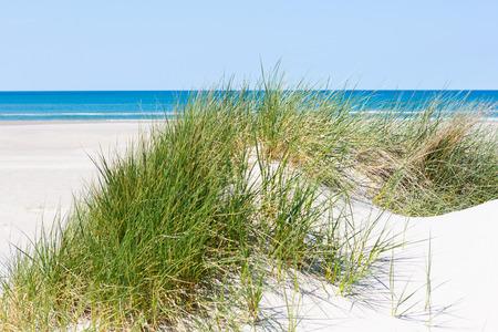 Wit zand groene gras Blue Sea Stockfoto