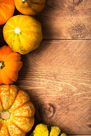 calabaza: Colorful Pumpkins on wooden background - Halloween, Thanksgiving Foto de archivo
