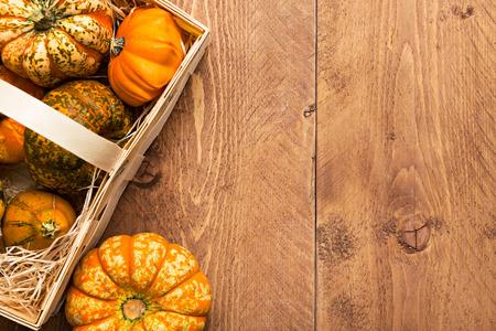 pumpkin pie: Colorful Pumpkins on wooden background - Halloween, Thanksgiving Stock Photo