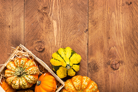 with harvest: Colorful Pumpkins on wooden background - Halloween, Thanksgiving Stock Photo