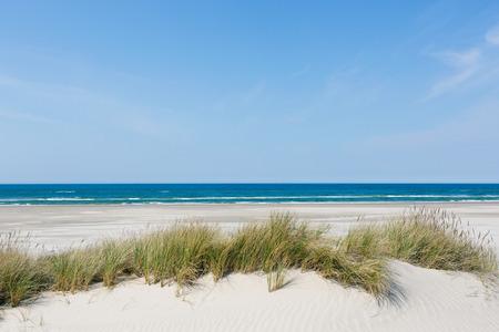 Strand en duinen en de zee Stockfoto