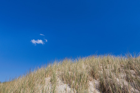 Dunes with beach grass against blue sky Stock Photo