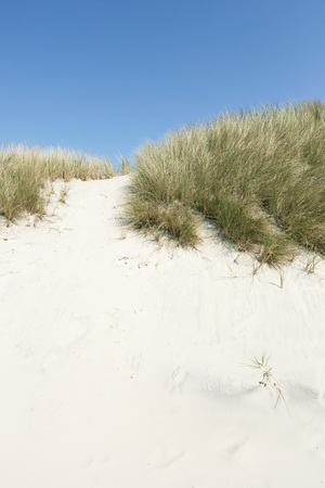 Beautiful white sand with green grass and blue sky