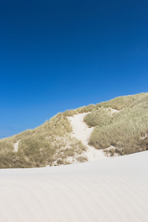 White sand with green dunes and blue sky in the summertime