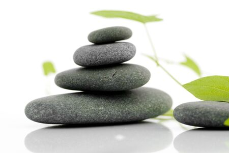 4 rocks and a green plant isolated on a white background photo