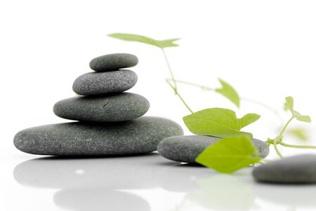 miror: 4 rocks and a green plant isolated on a white background Stock Photo