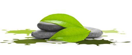 décor de l'environnement avec l'image verte de galets et de feuilles et de l'encre Splatter - est isolée sur fond blanc