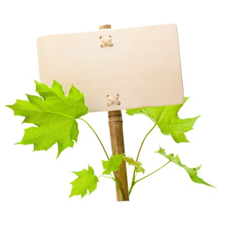 empty sign for message on a wooden panel and green plant - image is isolated on a white background Stock Photo - 6824459