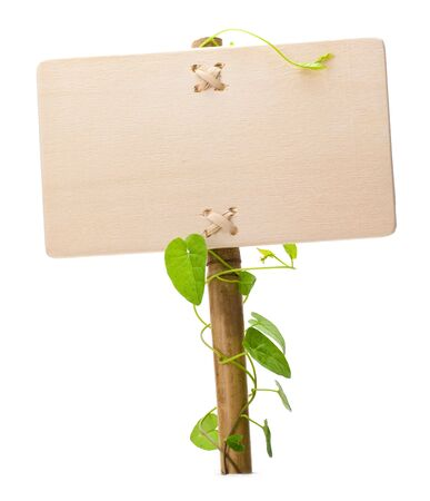 advertise: empty sign for message on a wooden panel and green plant - image is isolated on a white background Stock Photo