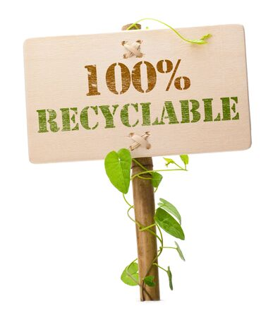 eco friendly sign message on a wooden panel and green plant - image is isolated on a white background photo