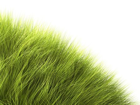 grass onto a part of sphere symbol of a green planet, angle of a page - 3d illustration illustration