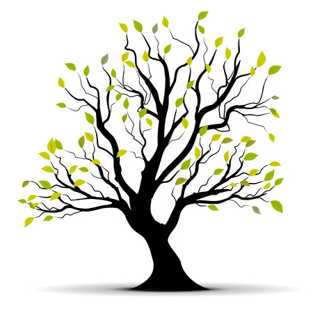 arbre vert isolé sur un fond blanc  Illustration