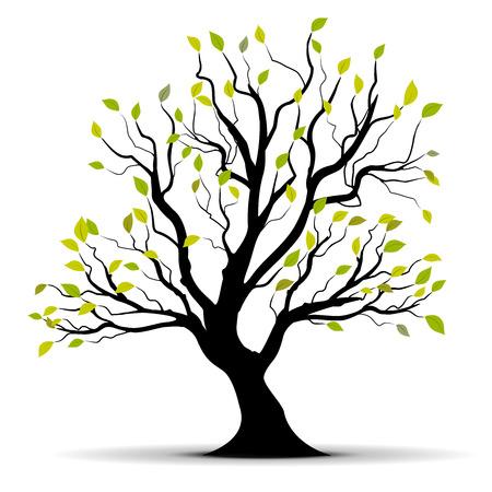 bomen zwart wit: groene boom geïsoleerd op een witte achtergrond  Stock Illustratie
