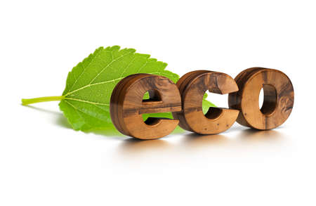 3D wooden eco word and green leaf over a white background Stock Photo - 8804164