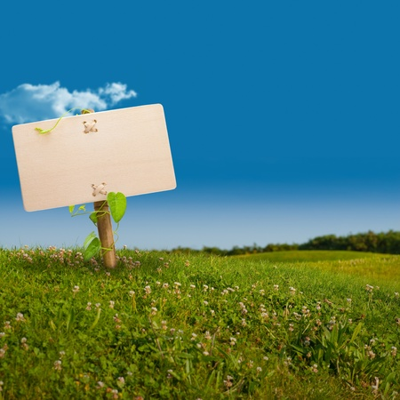 environment friendly: wooden sign on the left side of a green land with a blue sky, with one cloud, image is square Stock Photo
