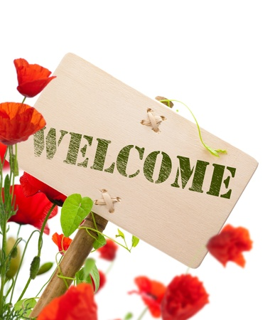 Welcome sign, wooden panel green plant and poppies - image is isolated on a white background