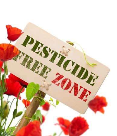pesticide free: pesticide free zone message on a wooden panel, green plant and poppies - image is isolated on a white background Stock Photo