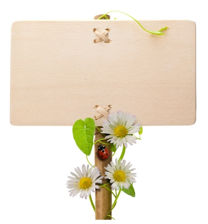 a signboard: wooden green sign over a white background with daisies and ladybug and green leaves ladybird is over the post of the banner