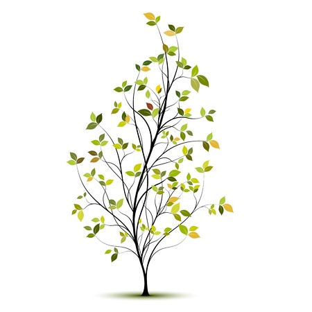 yound green tree silhouette with leaves and shadow Illustration