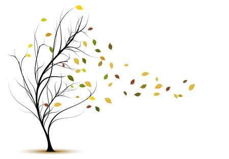autumn leaves falling: decorative tree silhouette in autumn with brown leaves and wind
