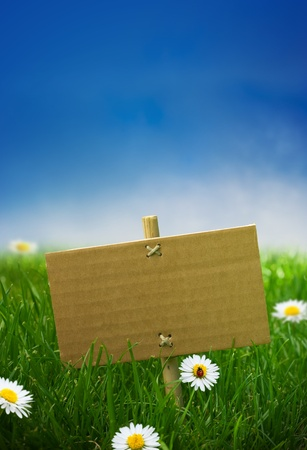 cardboard sign in a green garden grass, nature background, empty blue sky some daisies flowers and a ladybird photo