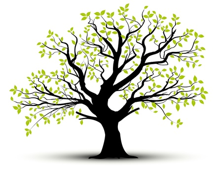 vector set - decorative tree and green leaves with shadow Illustration