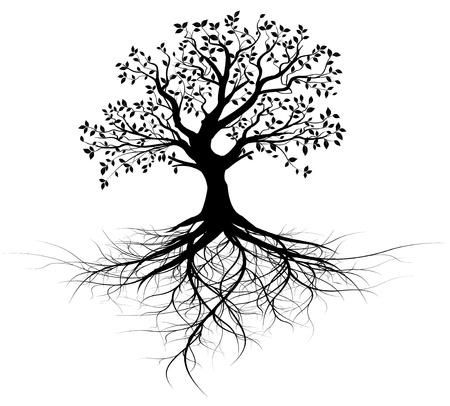 albero della vita: intero albero nero con radici isolato vettoriale sfondo bianco