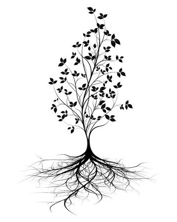 albero della vita: giovane albero con radici, sfondo bianco, silhouette nera con foglie, forma vettoriale verticale