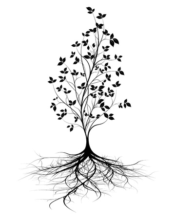 arbol de la vida: árbol joven con raíces, fondo blanco, silueta negro con hojas, forma vectorial verticales