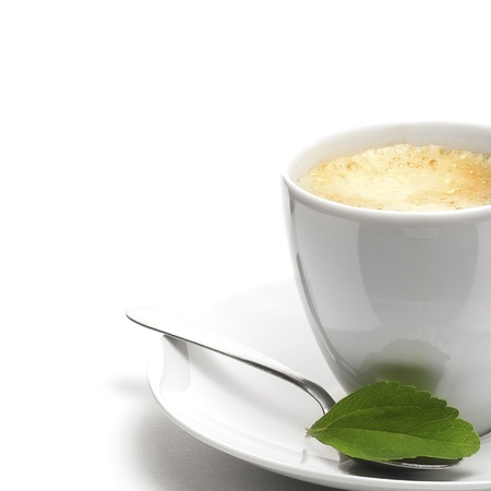 stevia plant and coffee cup, decorative background for right border of a page Stock Photo - 13168849