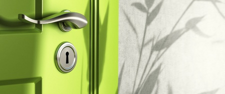 door leaf: home entrance, close up of a handle and keyhole, green door and a wall, shadow of leaves