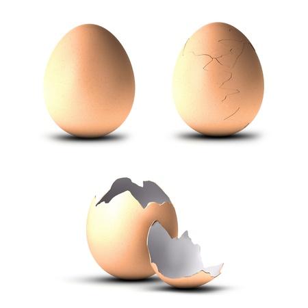 drie eieren, een hele, een ander gebarsten en de laatste open, illustratie op witte achtergrond